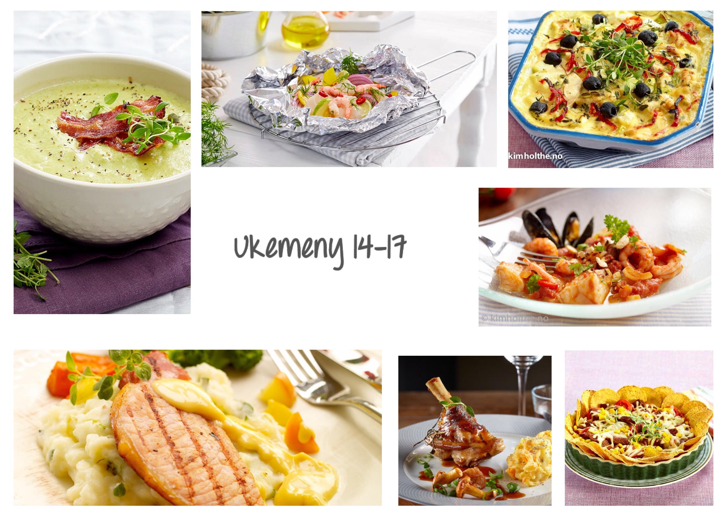 ukemeny-14-17